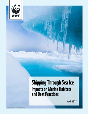 Shipping Through Sea Ice: Impacts on Marine Habitats and Best Practices