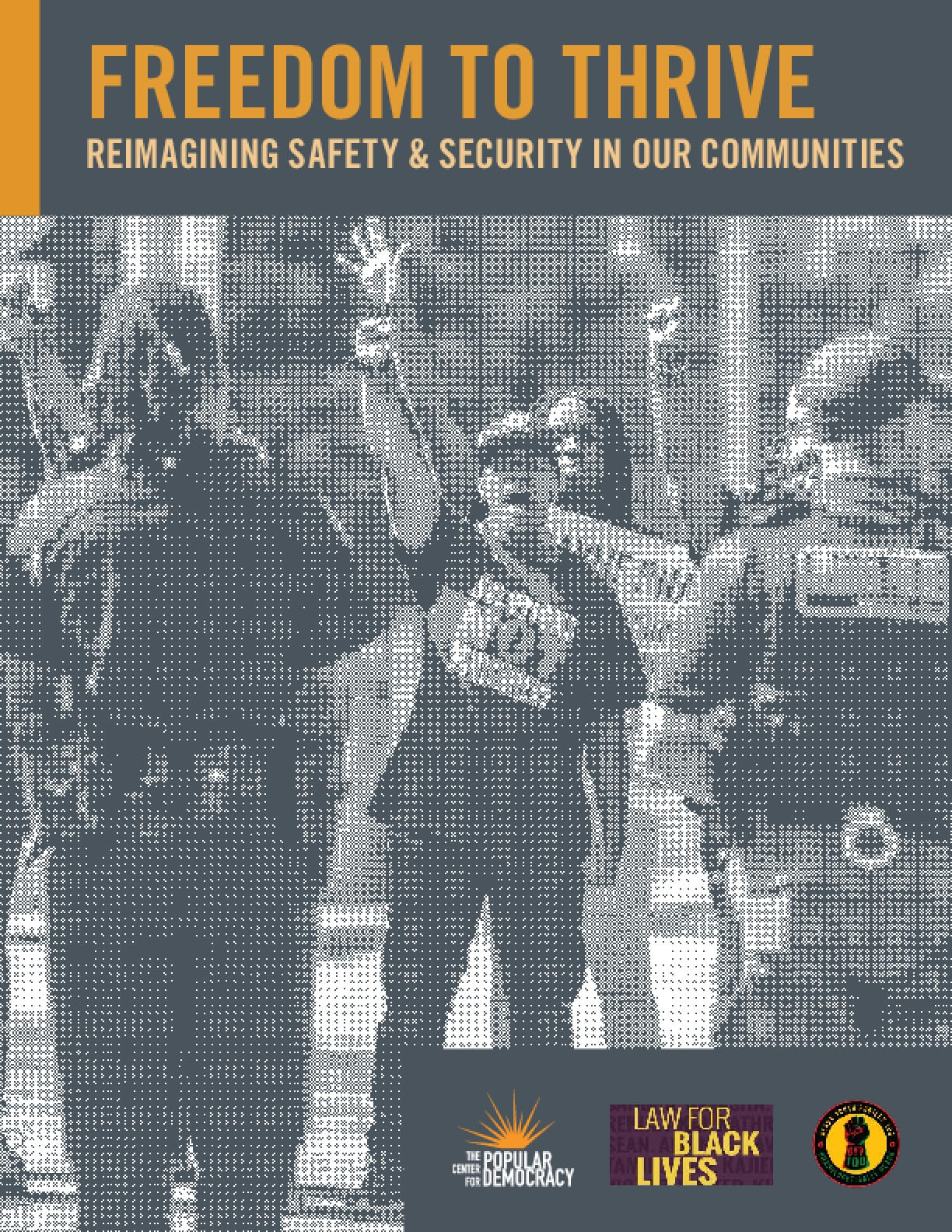 Freedom to Thrive: Reimagining Safety & Security in Our Communities