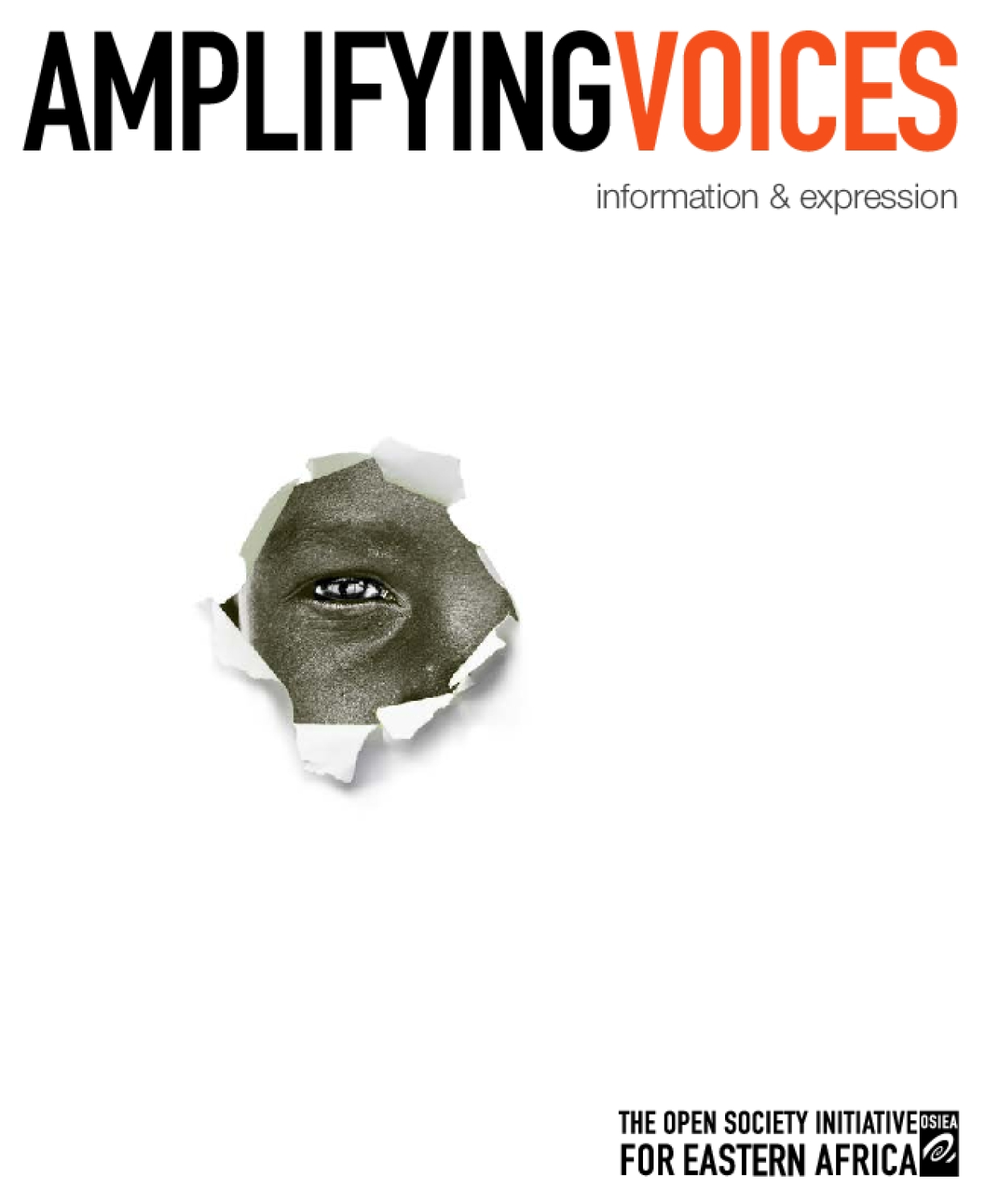 Amplifying Voices: Information and Expression