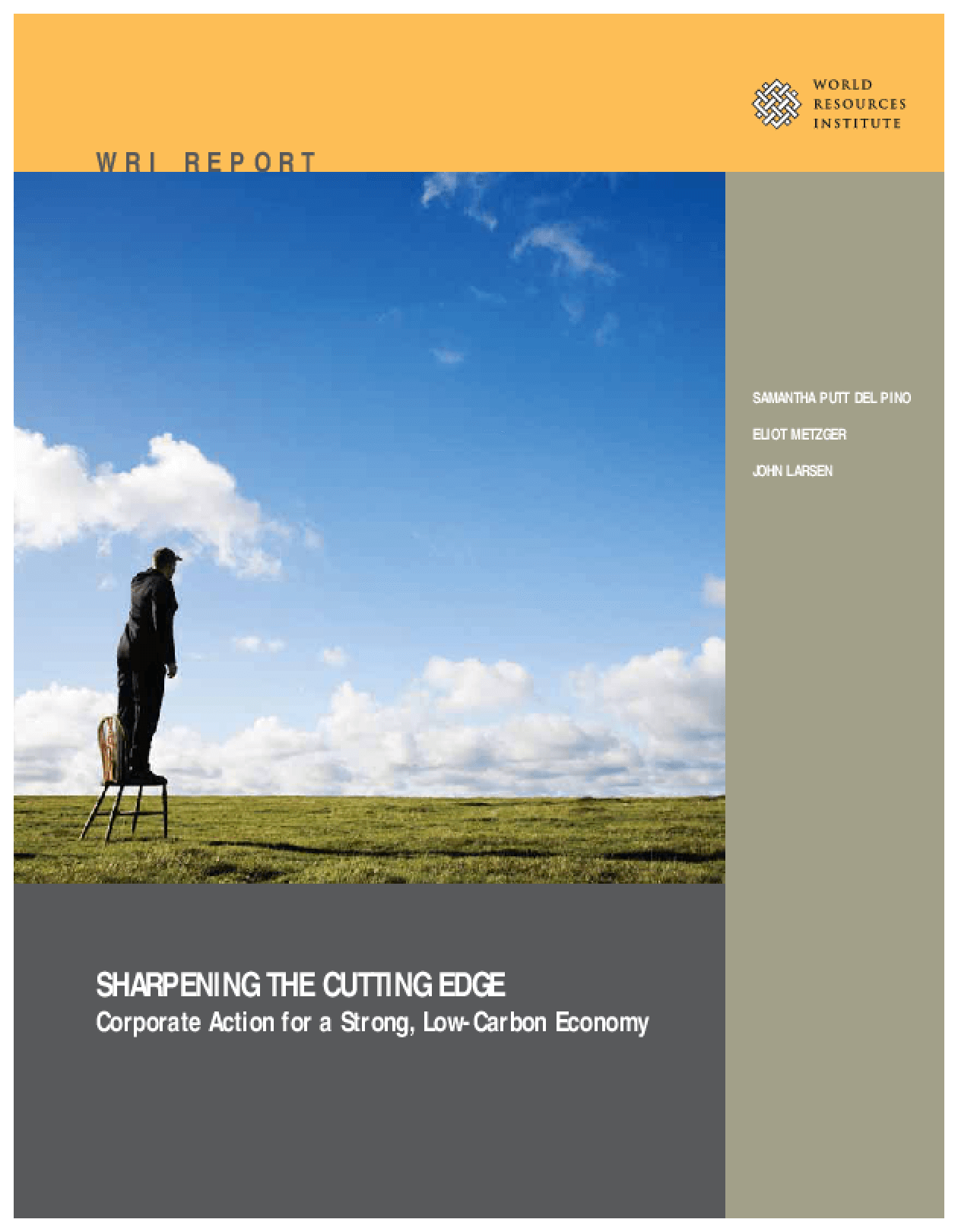 Sharpening the Cutting Edge: Corporate Action for a Strong, Low-Carbon Economy