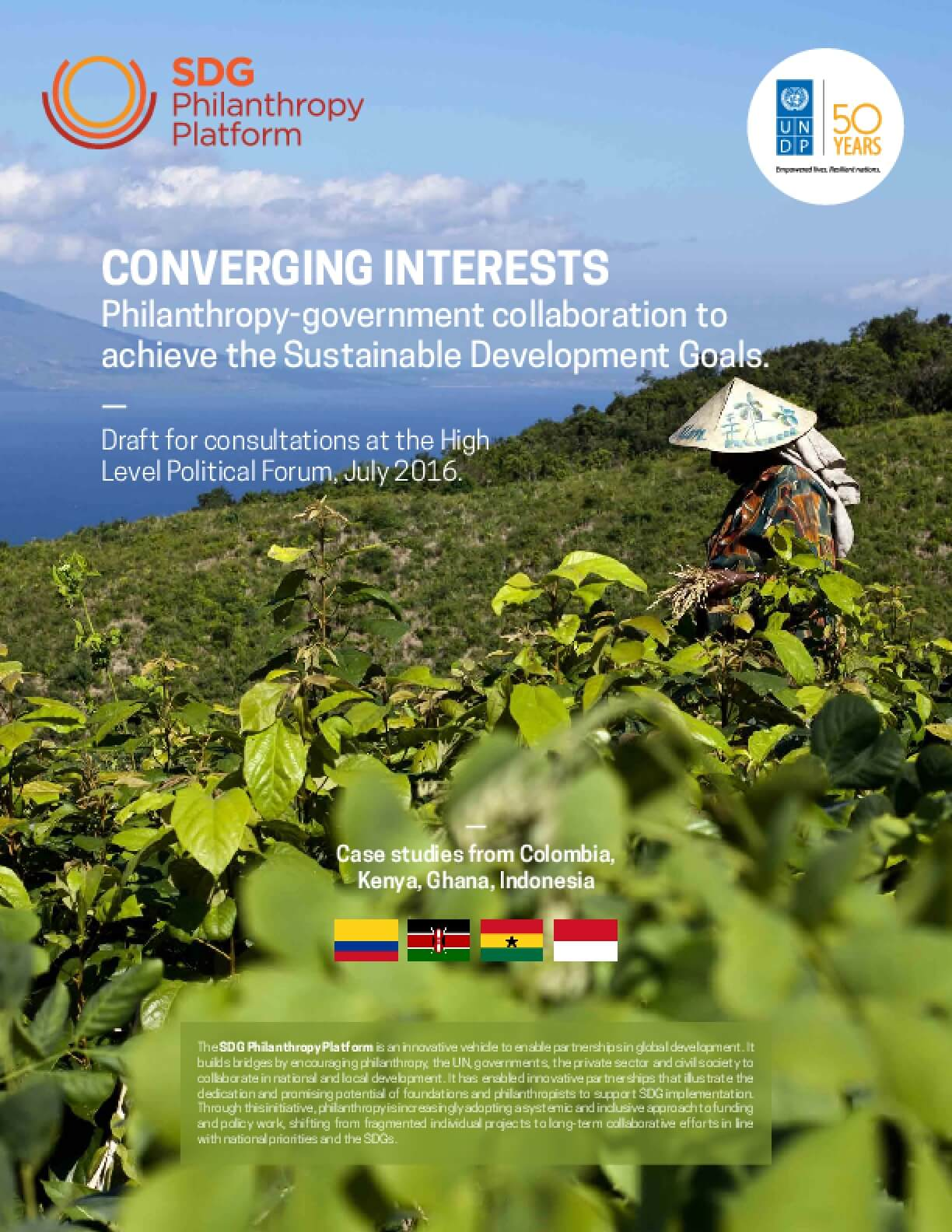 Converging Interests: Philanthropy-Government Collaboration to Achieve the Sustainable Development Goals