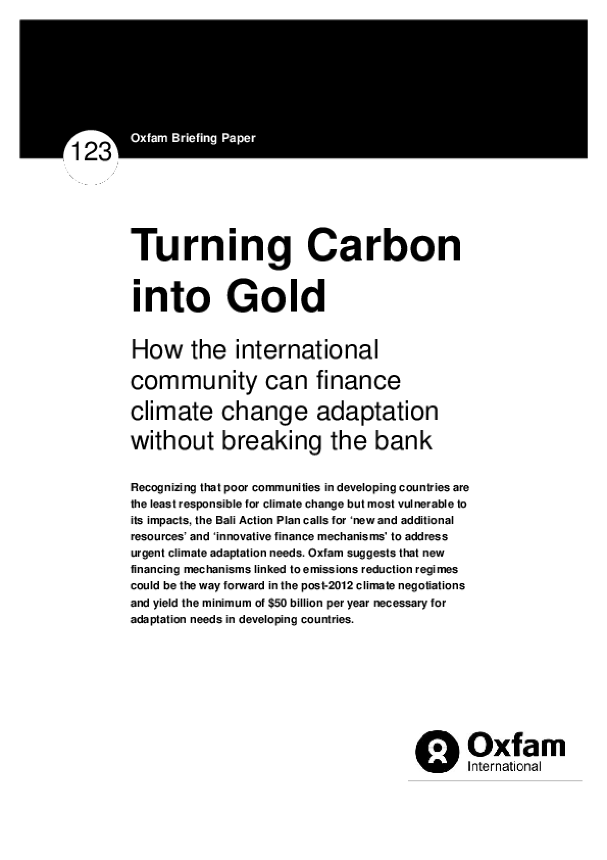 Turning Carbon into Gold: How the international community can finance climate change adaptation without breaking the bank