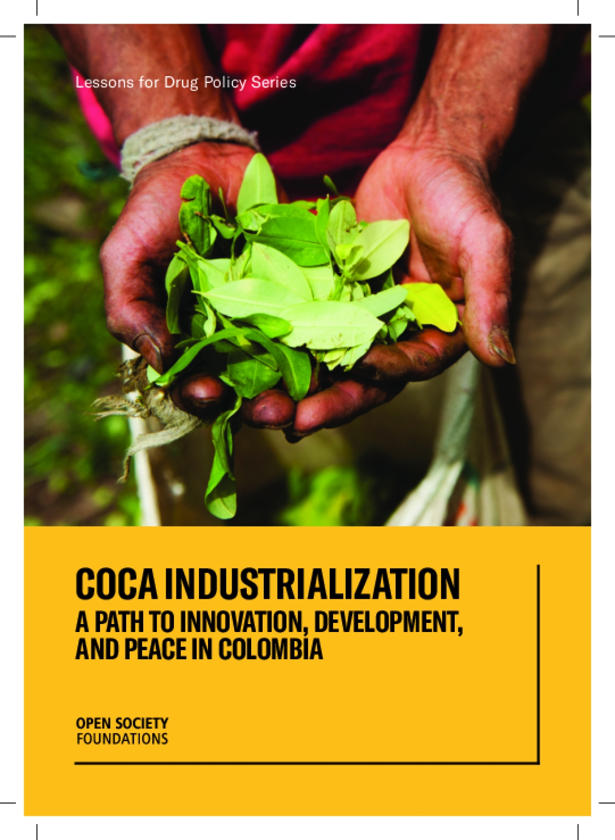 Coca Industrialization: A Path to Innovation, Development, and Peace in Colombia